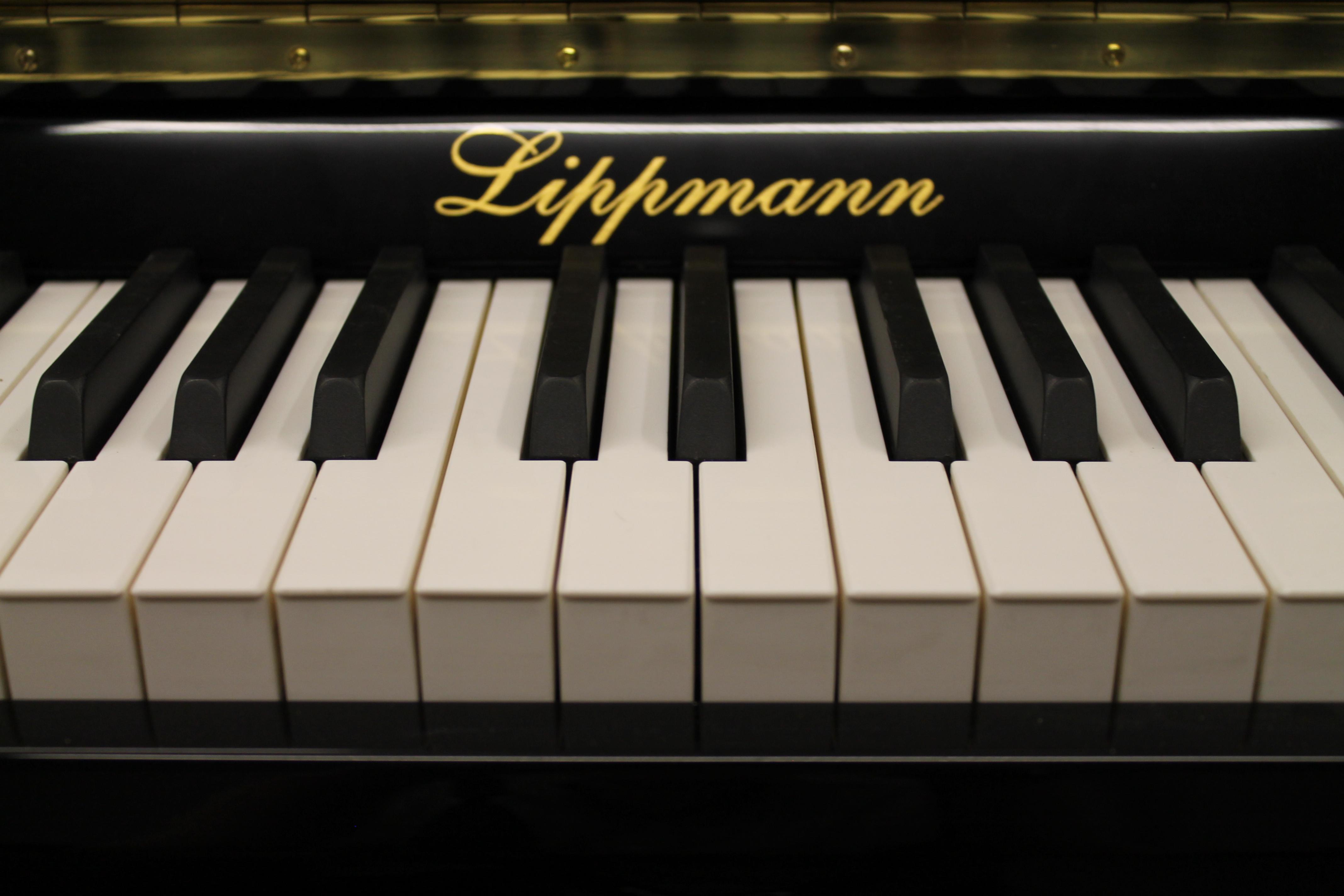 Lippmann Name Plate