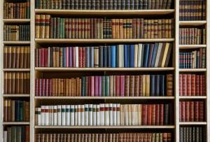 canstockphoto bookcase